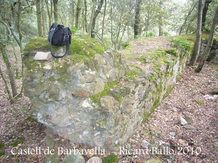 castell-de-barbavella-100116_512