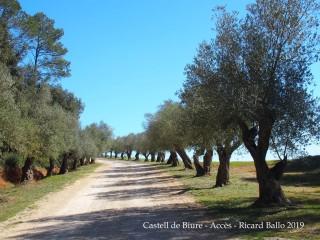Castell de Biure de Queixàs - Camí d'accès