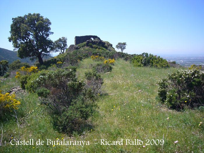 castell-de-bufalaranya-090507_571