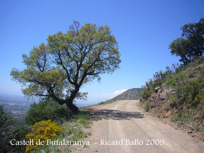 castell-de-bufalaranya-090507_577