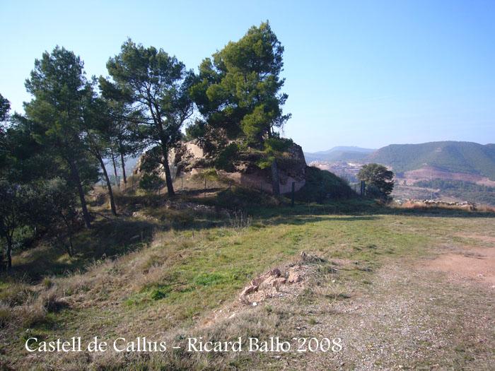 castell-de-callus-080123_544