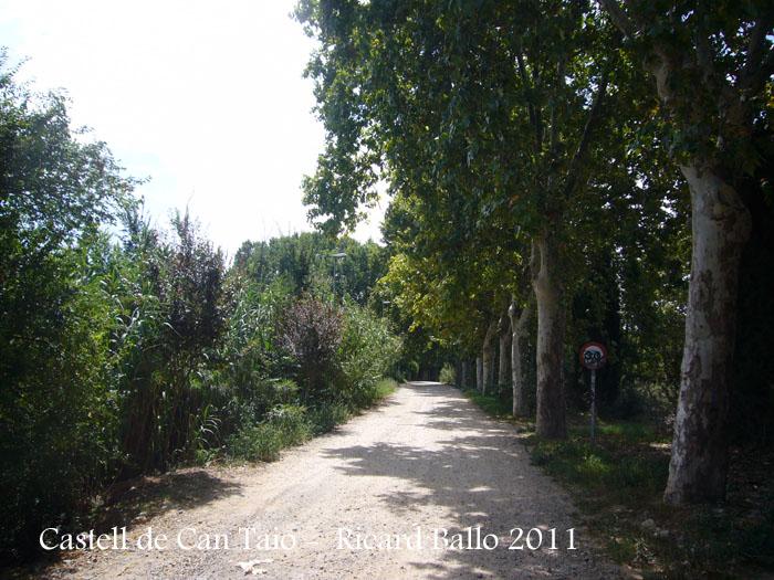 castell-de-can-taio-110818_503