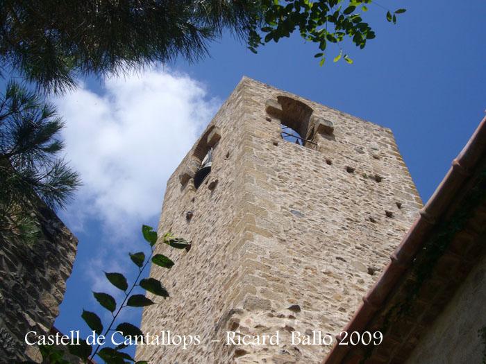 castell-de-cantallops-090715_514