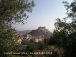 castell-de-cardona-des-de-la-torre-de-meer-111018_002