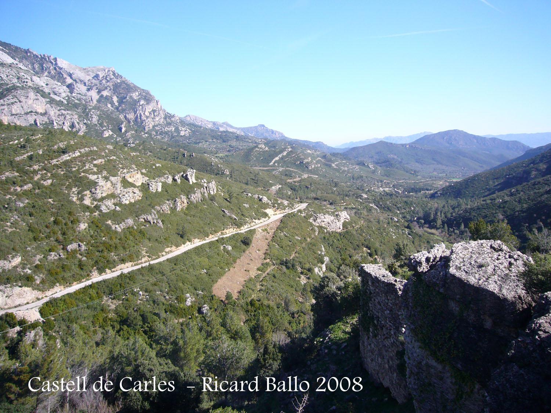 castell-de-carles-alfara-de-carles-080302_505