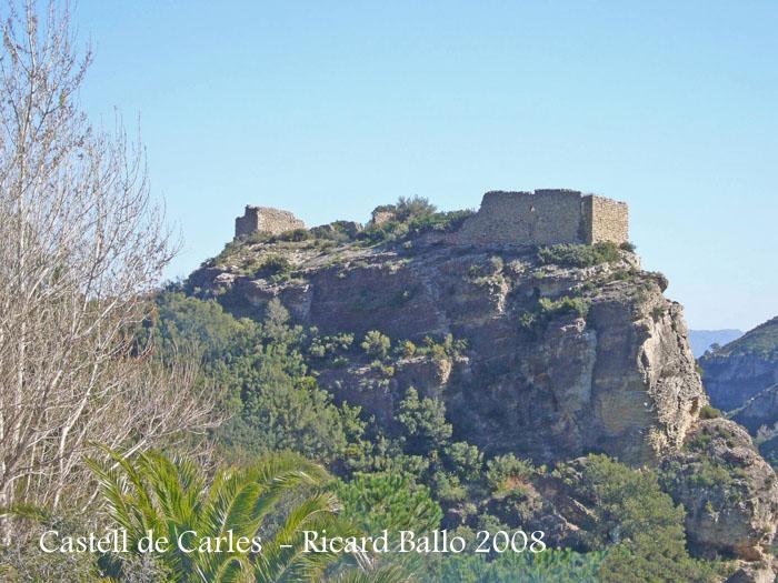 castell-de-carles-alfara-de-carles-080302_509bisblog