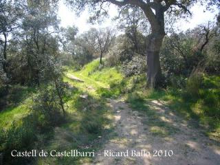 castell-de-castellbarri-100410_535
