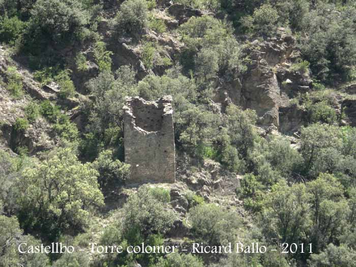 castellbo-torre-colomera-castellbo-110524_703_0