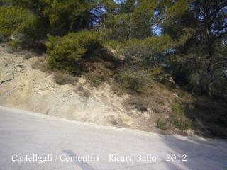 castell-de-castellgali-120225_528