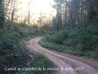 castell-de-castellvi-de-la-marca-070113_59