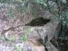 castell-de-cervols-061014_14