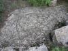 castell-de-cervols-061014_16