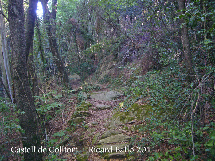 castell-de-colltort-110916_504bis