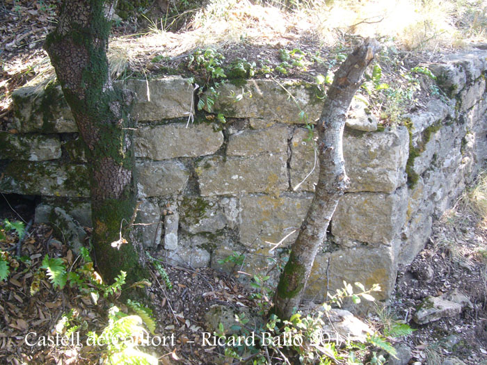 castell-de-colltort-110916_529