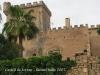 Castell de Ferran