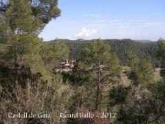 castell-de-gaia-120308_018