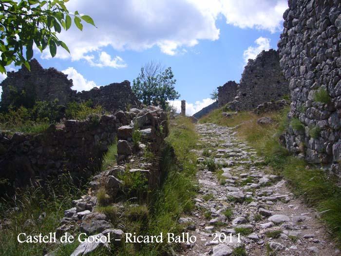 castell-de-gosol-110705_508