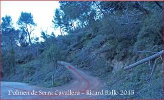 Camí al Dolmen de Serra Cavallera - Aquí són ben evidents els resultats dels estralls produïts per una recent ventada