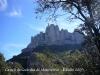 02-castell-de-la-guardia-de-montserrat-090308_565