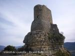 05-castell-de-guardia-081009_542