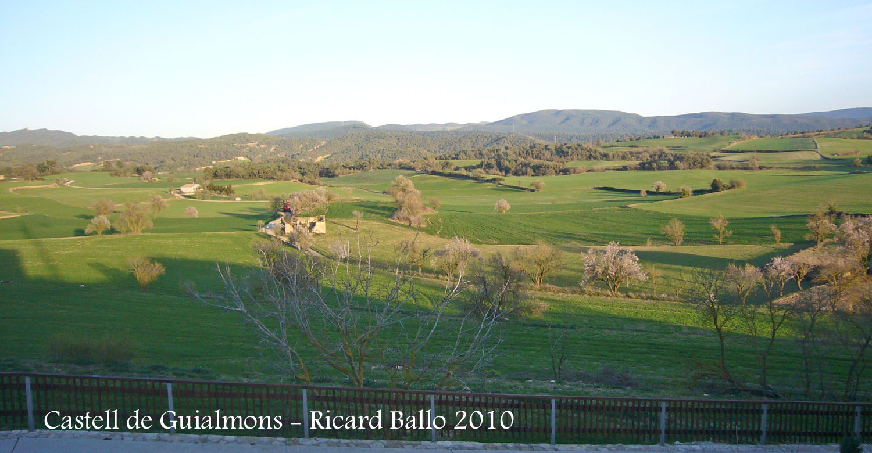 castell-de-guialmons-100327_503