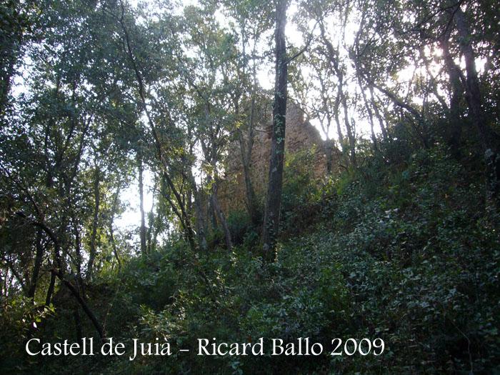 castell-de-juia-090926_510