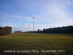 castell-de-la-guardia-pilosa-110203_531