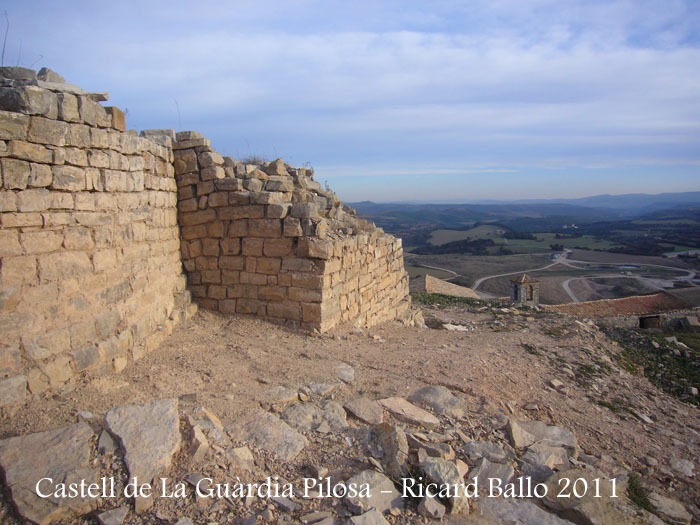 castell-de-la-guardia-pilosa-110203_514
