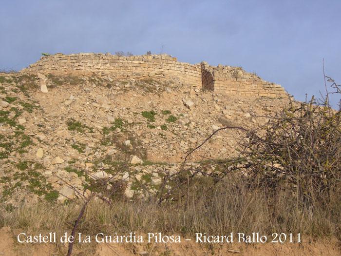 castell-de-la-guardia-pilosa-110203_523
