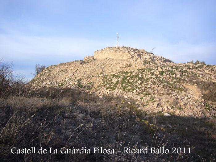 castell-de-la-guardia-pilosa-110203_525bisblog