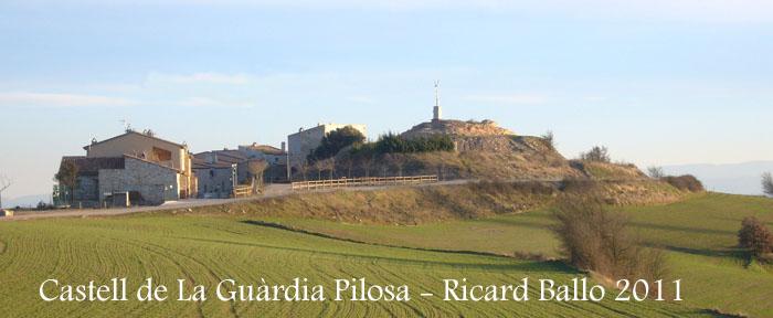 castell-de-la-guardia-pilosa-110203_530bis_andreu