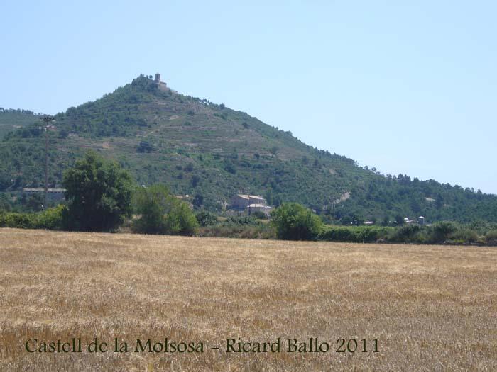 castell-de-la-molsosa-110621_535