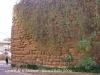 Castell de La Morana