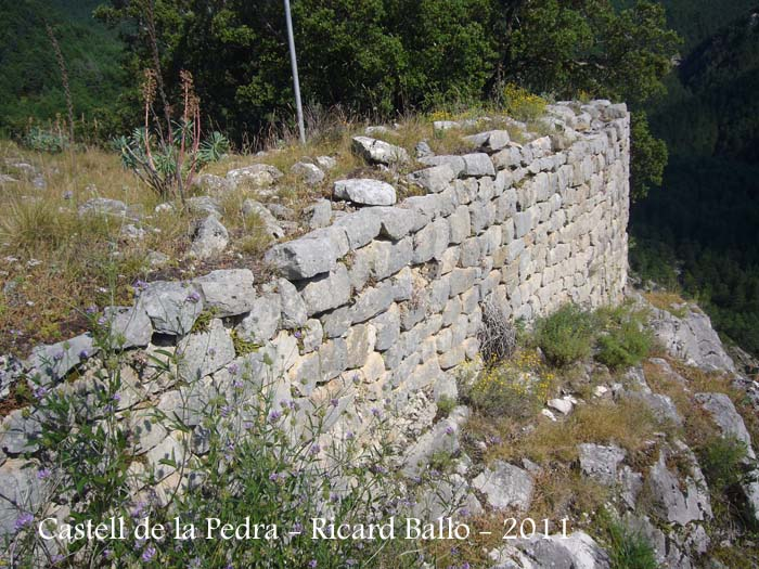 castell-de-la-pedra-110705_513