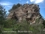 castell-de-la-roca-120505_713