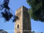 castell-de-la-torre-lloreta-100410_547