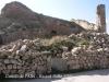 Castell de l'Albi