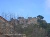 Castell de l'Albiol - vist des de L'Albiol.