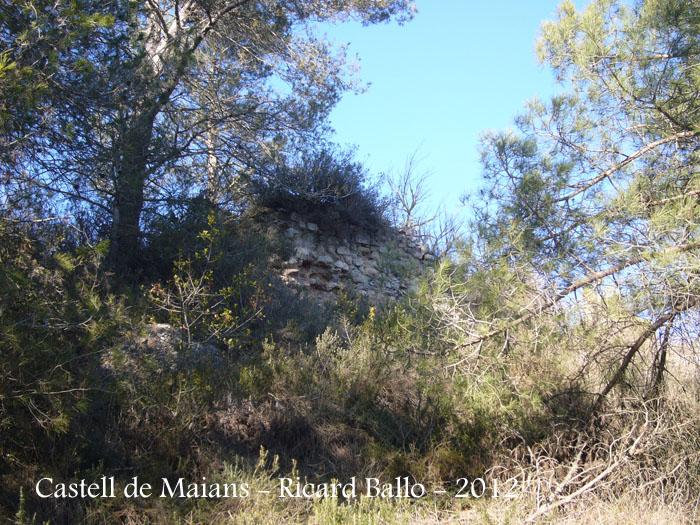 castell-de-maians-120218_505