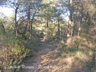 castell-de-maians-120218_014bisblog