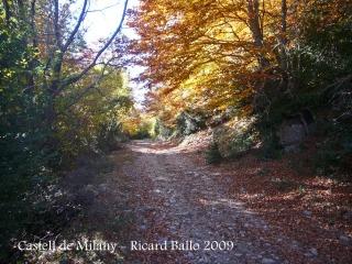 castell-de-milany-091029_516bisblog