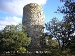 castell-de-milla-081106_511