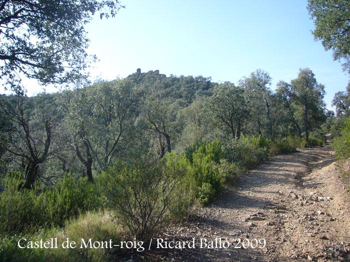 castell-de-mont-roig-090711_507
