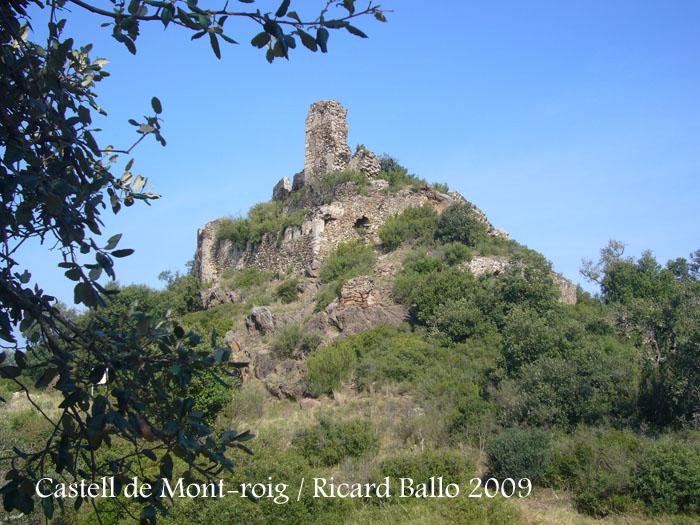 castell-de-mont-roig-090711_576