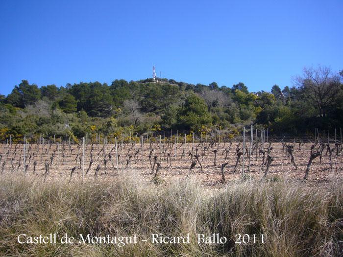 castell-de-montagut-110225_525