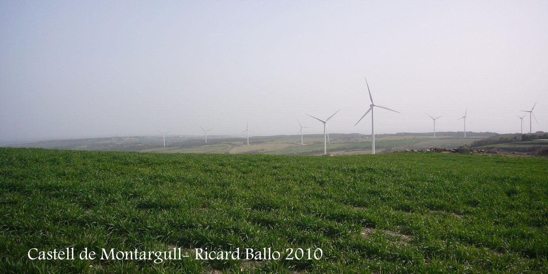 castell-de-montargull-100320_503bis