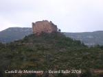 castell-de-montmany-080429_517