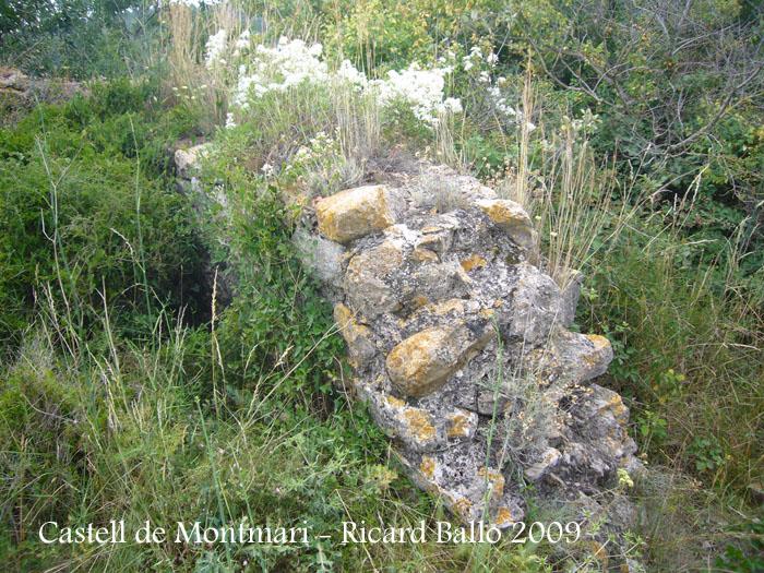 castell-de-montmari-090628_503