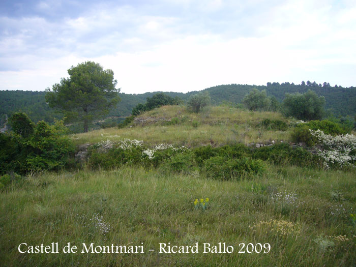 castell-de-montmari-090628_508