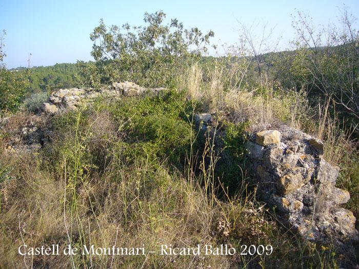 castell-de-montmari-090929_503
